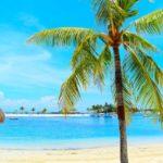 【2021年最新】セブ島マクタン空港でスマホSIMの購入場所はココ!